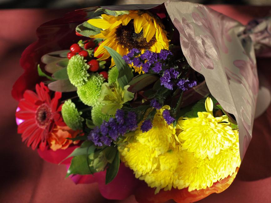 Commentaires sur le concours, photos hors concours du mois de FEVRIER 2009 PA051496