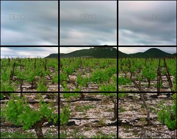 """Visite commentée de la photo """"Arboras, Hérault, Mai 2007"""" de raymond Depardon PIC_FIBO4"""