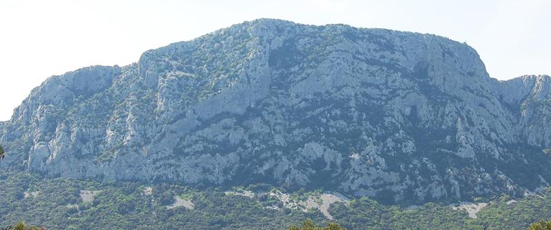 """Visite commentée de la photo """"Arboras, Hérault, Mai 2007"""" de raymond Depardon PIC_NORD"""