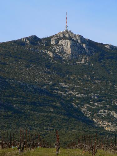 """Visite commentée de la photo """"Arboras, Hérault, Mai 2007"""" de raymond Depardon Saint_baudille"""