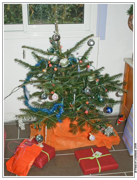 Votre Sapin de Noël Sapin